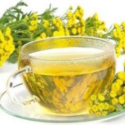 Монастырский чай от грибка ногтей: состав, применение и отзывы